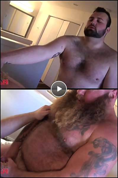 daddy gay bear sex video